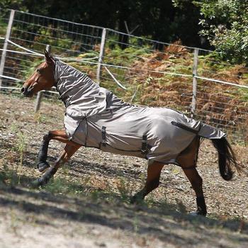 2 guêtres intégrales équitation cheval NEOPRENE noir - 806632