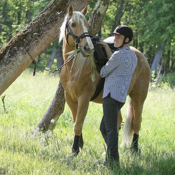 Longe équitation randonnée SENTIER marron - 808815