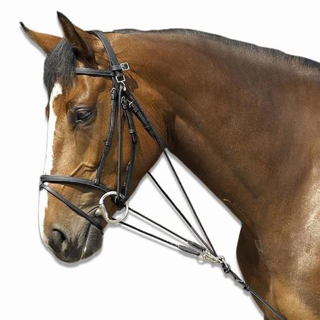 SCHOOLING horse riding gogue - black, horse sized