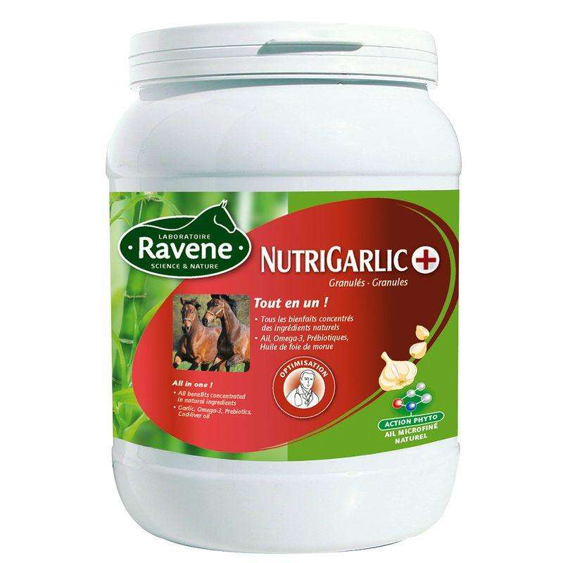 HORSE SUPPLEMENTS Horse Riding - Nutrigarlic 900g RAVENE - Horse Stable and Yard