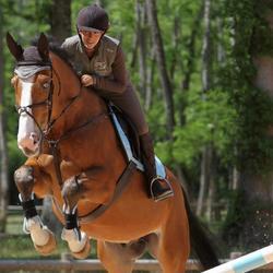 Pechopetral + gamarra equitación caballo y poni ROMEO marrón