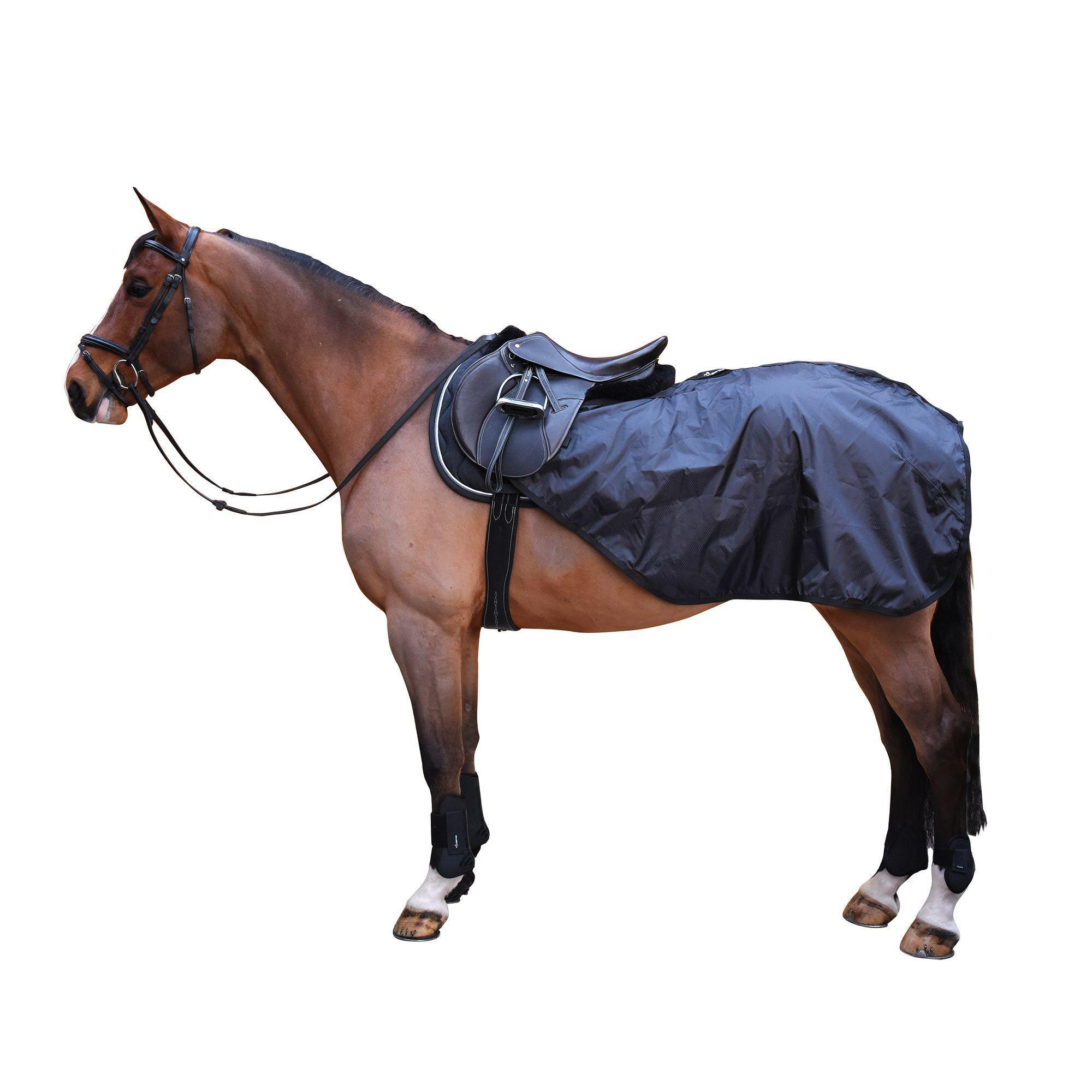 Allweather Horse Riding Exercise Rug Sizes For Horses And Ponies   Black |  Fouganza