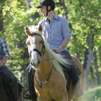 Longe équitation randonnée SENTIER marron - 832894