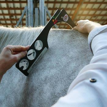 """Selle mixte synthétique à arçon réglable équitation cheval RIDE 2 noir 17""""5 - 836645"""