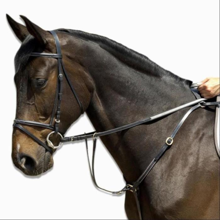 Pechopetral + gamarra equitación Fouganza SCHOOLING poni negro