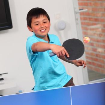 ARTENGO FB 800 table tennis training ball x 10 - 839580