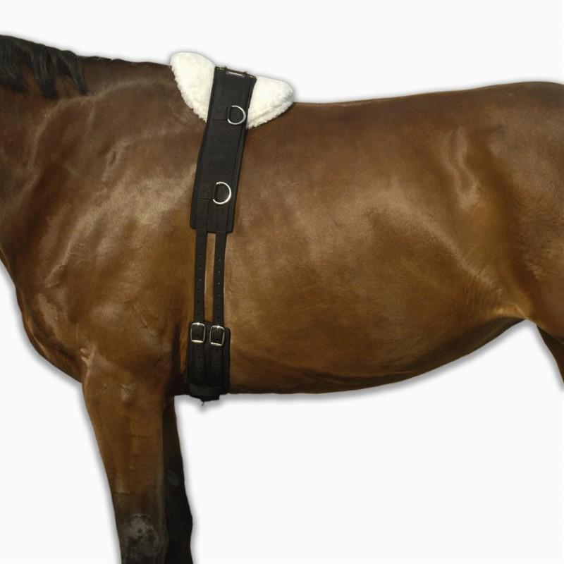 Cincha elástica de trabajo de equitación. Poni y caballo. Negro.