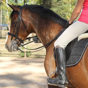 Set bride + rênes équitation BEAUVALAIS noir taille cheval