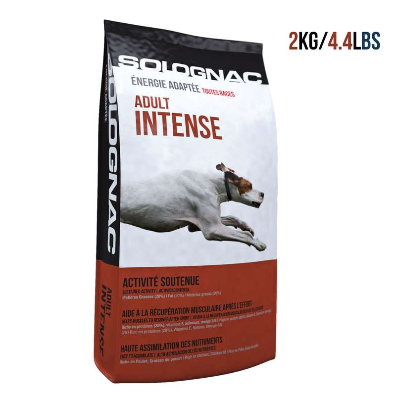 DOG NUTRITION Shooting and Hunting - Adult Intense Dog Food 2 kg SOLOGNAC - Working Dogs