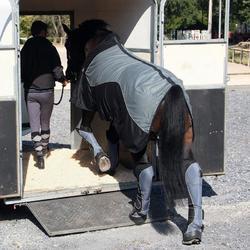 Transportbeschermers Traveller 500 ruitersport zwart en grijs x4 - maat paard - 842664