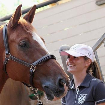 Licol équitation poney et cheval ROMEO cuir - 844023