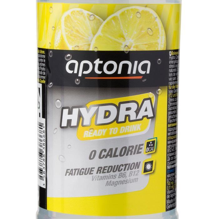 Boisson à base d'eau minérale naturelle aromatisée HYDRA Citron 500ml - 844926