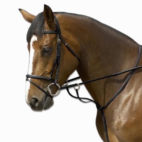 Martingaal met ringen ruitersport SCHOOLING zwart - maat paard - 848491
