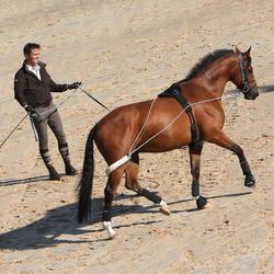 Longiergurt Pony und Pferd schwarz