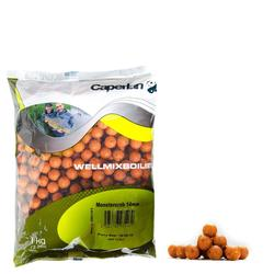 Boilies voor karpervissen Wellmix 14 mm Strawberry 1 kg