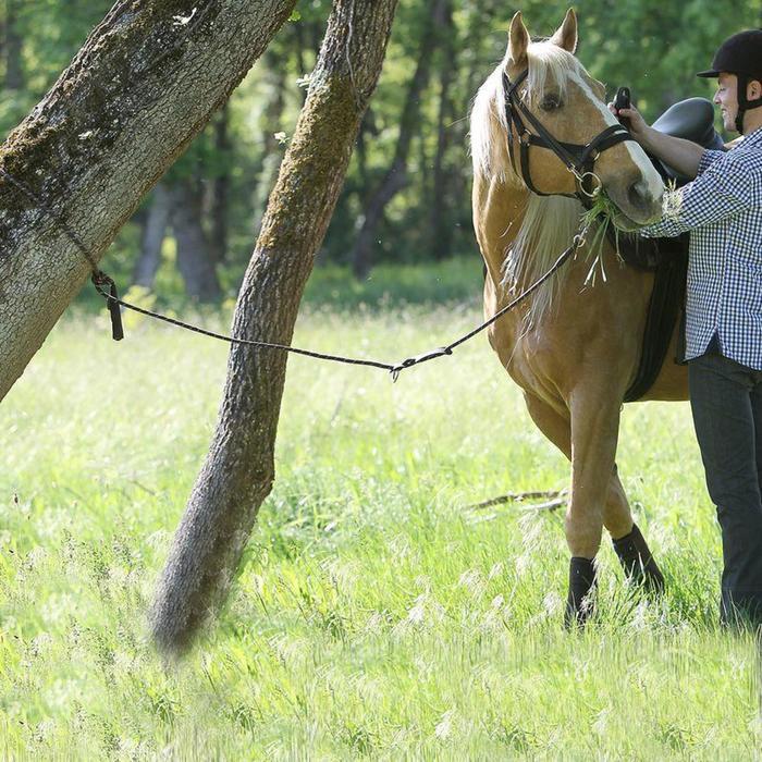 Longe équitation randonnée SENTIER marron - 858784