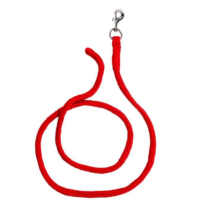 Führstrick Tack Pony und Pferd 2 m rot