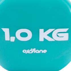Gym halters pvc 2 x 1 kg - 875977