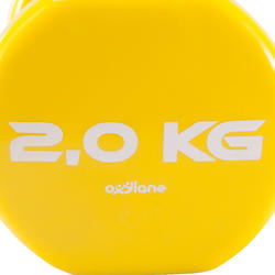 Gym halters pvc 2 x 2 kg - 875992