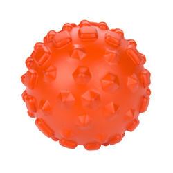 Massage Kit: Massage roller, ball, stick