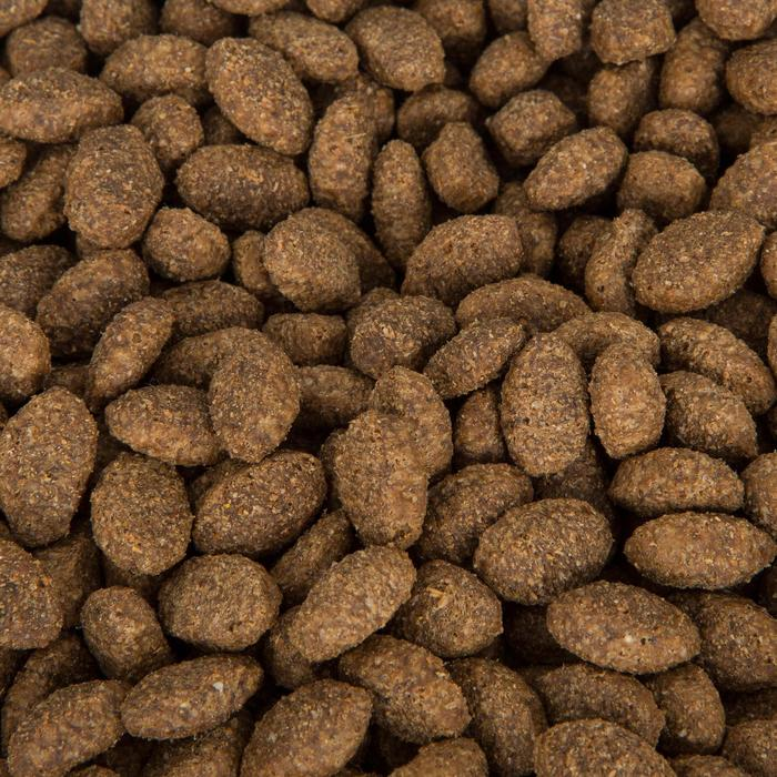 Hondenvoer onderhoudsvoeding 10 kg
