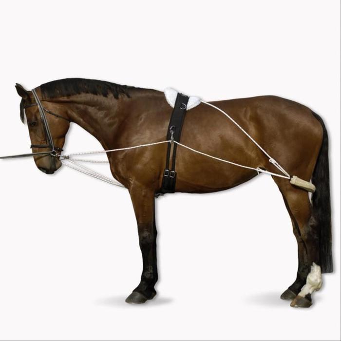 Ausbildungsgeschirr Hilfszügel Pferd weiß