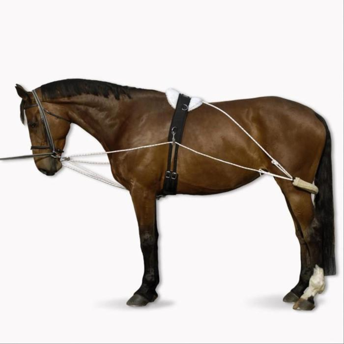 Polyvalente teugels ruitersport paard wit