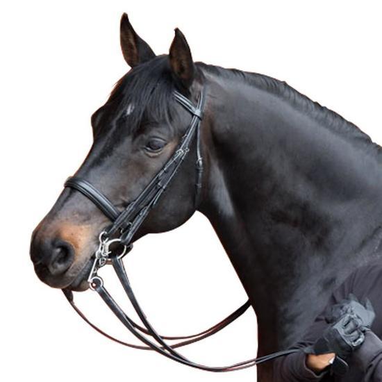 Set hoofdstel + teugels Beauvalais ruitersport zwart - paard - 909108