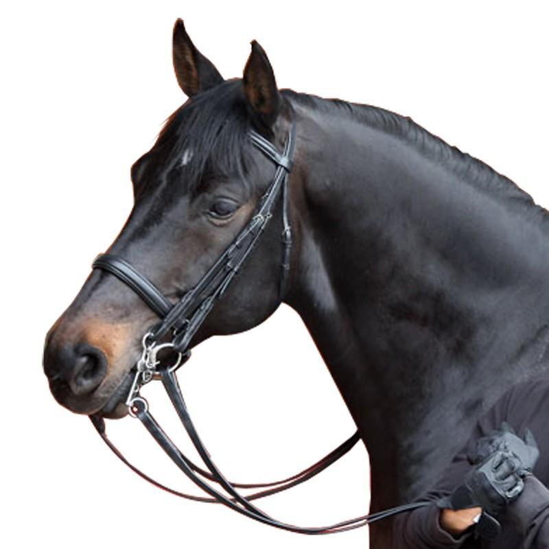 Set bride + rênes équitation cheval BEAUVALAIS noir