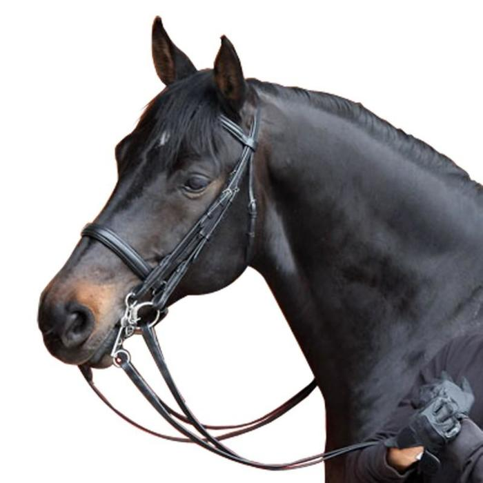 Set bride + rênes équitation cheval BEAUVALAIS noir - 909108