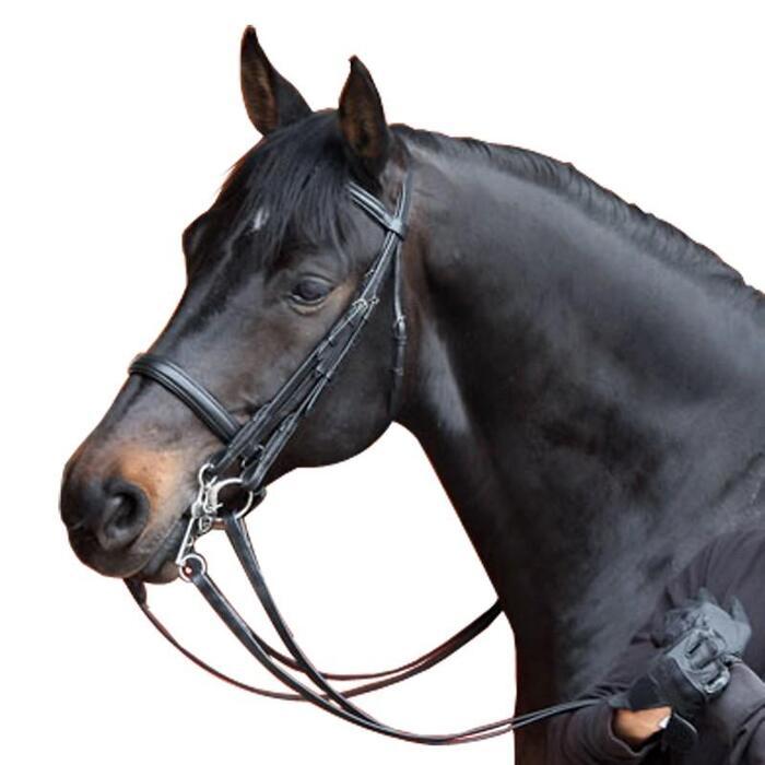 Set hoofdstel + teugels voor paard Beauvalais zwart