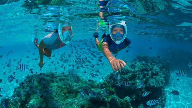 préserver l'océan