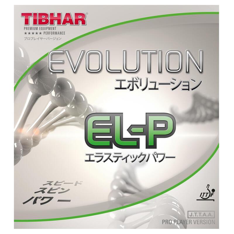 REVETEMENT OFFENSIF TIBHAR EVOLUTION EL-P