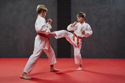 Karatepak 250 volwassenen - 953602