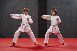 Karatepak 250 volwassenen - 953610