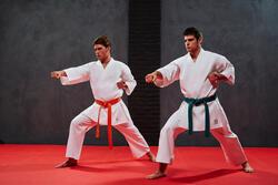 Karatepak 250 volwassenen - 953612