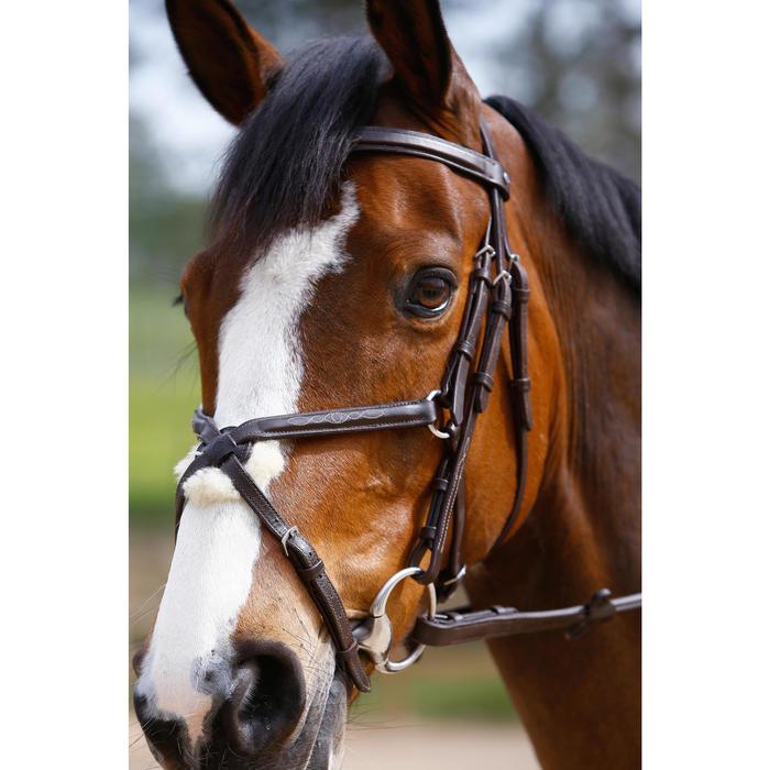Filet + rênes équitation PADDOCK - taille cheval - 954660