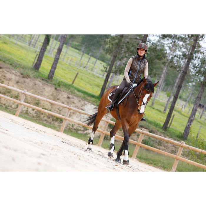 Filet + rênes équitation PADDOCK - taille cheval - 954661