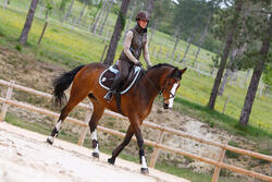 Hoofdstel + teugels Paddock ruitersport zwart- paard - 954662