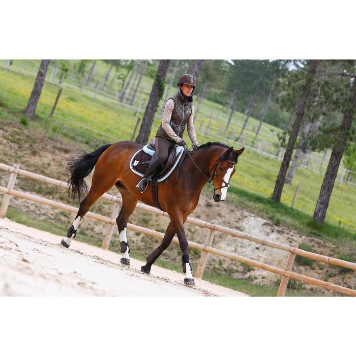 Trense und Zügel Paddock Pferd braun