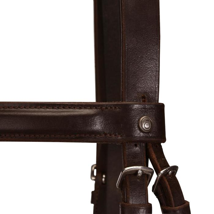 Filet + rênes équitation PADDOCK - taille cheval - 954666