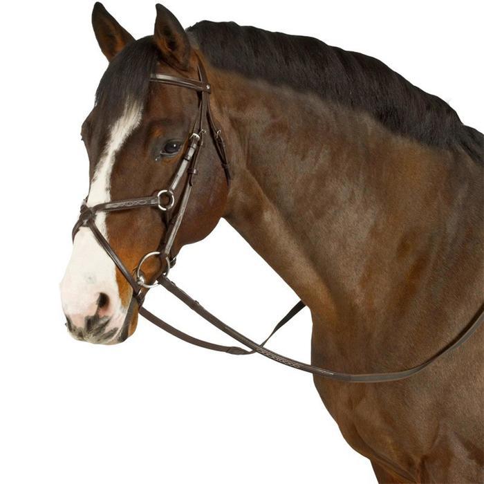 Hoofdstel + teugels ruitersport Paddock bruin - maat paard