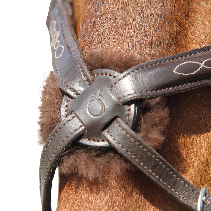 Filet + rênes équitation PADDOCK - taille cheval - 954686