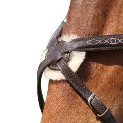 Hoofdstel + teugels Paddock ruitersport zwart- paard - 954687