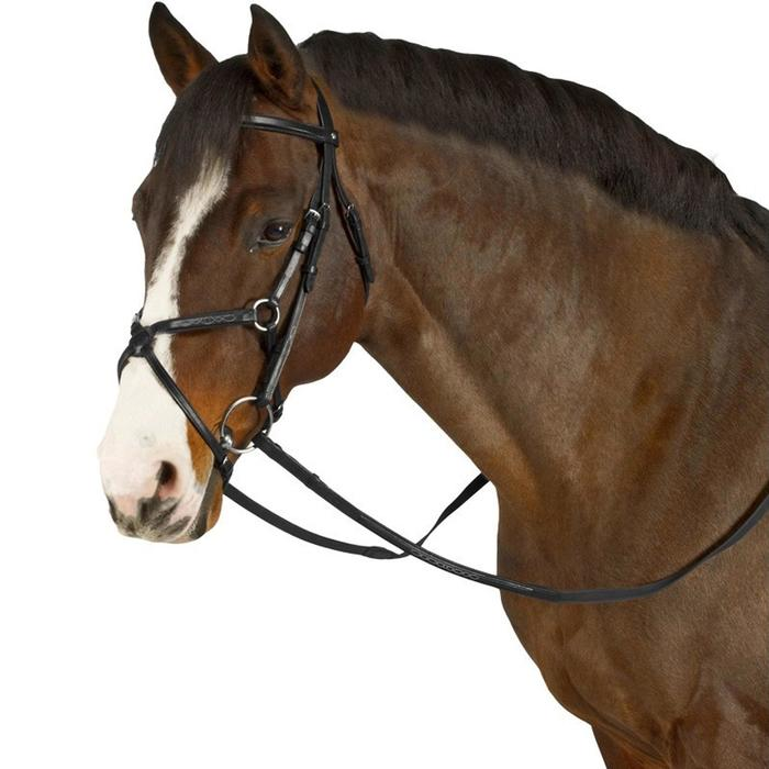 Cabezada + riendas equitación PADDOCK negro talla caballo