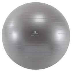 gymballs decathlon. Black Bedroom Furniture Sets. Home Design Ideas