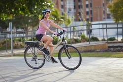 Elektrische fiets Original 700 36 V - 962536