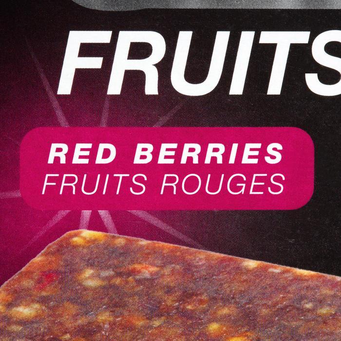 Barre énergétique ULTRA BARS fruits rouges 5x40g - 969798