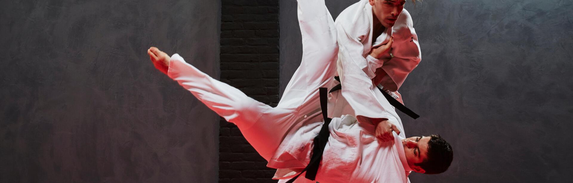 judo et arts martiaux