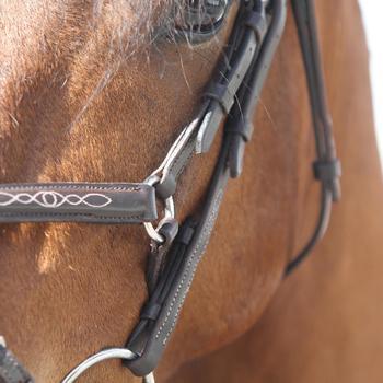 Filet + rênes équitation PADDOCK - taille cheval - 99338